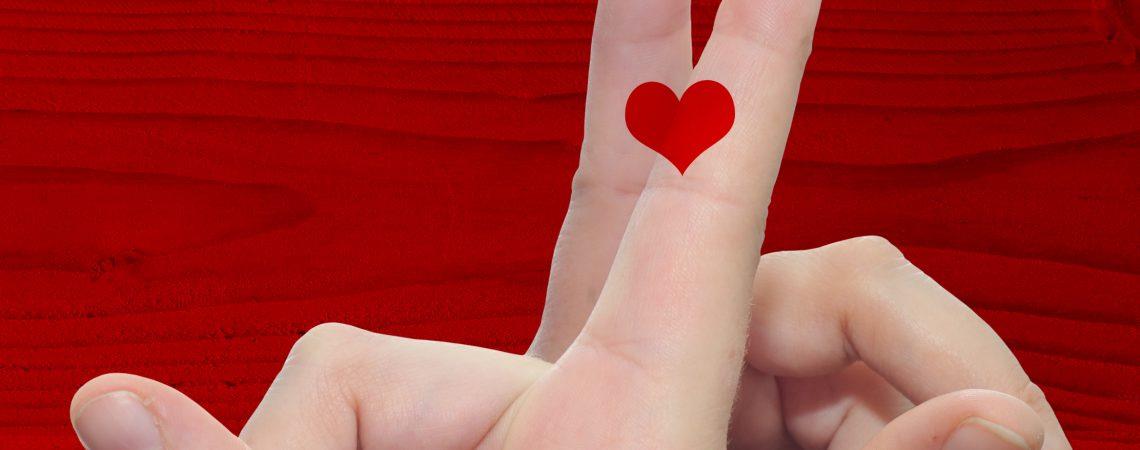 """Cruise """"Amo-te Douro"""" , St. Valentine's Day"""